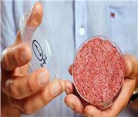 سنغافورة.. أول دولة تقر بيع اللحوم المصنعة في المعامل
