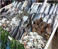 بورصة أسعار الأسماك في سوق العبور اليوم