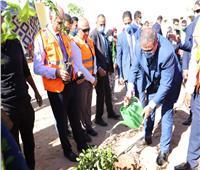 وزير القوى العاملة يشارك 500 طالب بزراعة 9 أفدنة بجامعة أسوان