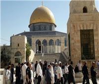 أكثر من 100 مستوطن إسرائيلي يقتحمون المسجد الأقصى