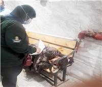 استجابة لـ أخبار اليوم  تدخل سريع لإنقاذ «فتاة الأوبرا» من شوارع وسط البلد