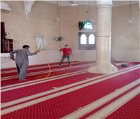 تعقيم المساجد وتطهير الترع وصيانة أعمدة الإنارة بالمحلة