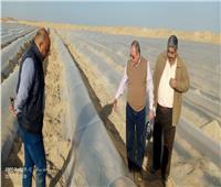 «الزراعة» تتابع دراسات الحصر التصنيفي للتربة بمنطقة توشكى