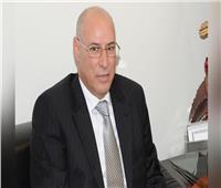 رئيس بعثة الجامعة العربية يشيد بنزاهة الانتخابات وسلاسة إجراءات التصويت