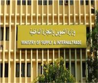 وزير التموين: إقامة منطقة لوجستية بجنوب سيناء بالتعاون مع القطاع الخاص