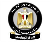 معدل البطالة يعاود الانخفاض في مصر رغم أزمة «كورونا» | انفوجراف