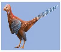 من العصر الطباشيري.. العثور على «الديناصور الدجاجة»