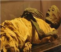 أستاذ آثار يكشف تفاصيل نقل مومياوات 6 ملوك فراعنة لمتحف الحضارة