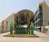 «الفاو» توافق على طلب السعودية بإقامة سنة دولية للتمور عام 2027