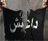 مد أجل الحكم على 555 متهما بالانضمام لـ«داعش» إلى 29 ديسمبر