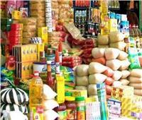 ملاحقة لصوص الدعم.. ضبط 279 طن سلع أساسية ولحوم ودواجن فاسدة