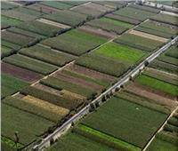 حصاد 2020 | بالأرقام.. إنجازات «الريف المصري» في الـ 1.5 مليون فدان