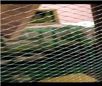«بطارية أرانب» تهدد حياة أسرة بمنطقة باكوس في الإسكندرية