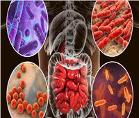علماء يتوصلون إلى خلايا الأوعية المسببة للإلتهابات المزمنة بين البدناء