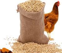 «الزراعة»: حملات مفاجئة للتفتيش على صناعة وتخزين الأعلاف