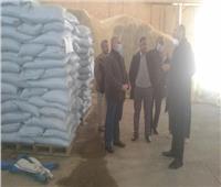 «الزراعة» توفير تقاوي المحاصيل الشتوية بجودة عالية وأسعار مخفضة