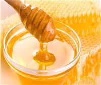 إحداها بـ«المنديل».. كيف تفرق بين العسل الأصلي والمغشوش؟