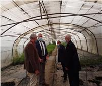 وزير الزراعة يتفقد مشتل المنيب لرفع كفاءة الأصول غير المستغلة| صور