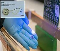 ابتكار جهاز لاسلكي صغير يكافح السمنة