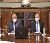 وزيرا الخارجية والري يشاركان في الاجتماع السداسي حول سد النهضة