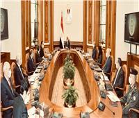 الرئيس السيسي يوجه بتنفيذ مشروع التجمعات البدوية لدعم أهالي سيناء