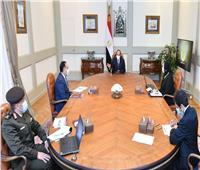 الرئيس السيسي يوجه بتنفيذ كافة المشروعات المكملة لمدينة الروبيكي