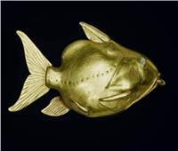 قصة صورة | السمكة الذهبية المصرية الذي عثر عليها العالم