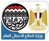 وزارة قطاع الأعمال توضح جهود تطوير نادي غزل المحلة