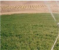 تحذير من «الريف المصري» بشأن بيع أراضي مشروع الـ 1.5 مليون فدان