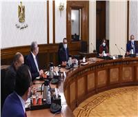 رئيس الوزراء يستعرض موقف الثروة السمكية وجهود تطوير بحيرة المنزلة