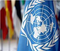تعيين البلغارية إلينا بانوفا منسقا مقيما للأمم المتحدة في مصر