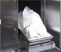 جهود أمنية لكشف لغز العثور على جثة وسط الأراضى الزراعية بالدقهلية
