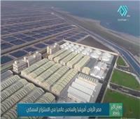 مصر الأولى أفريقيًا والسادس عالميًا في الاستزراع السمكي| فيديو