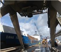 ميناء الإسكندرية ينهي أزمة شحنة الأخشاب الملوثة إشعاعيا