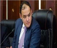 رئيس اقتصادية النواب لـ«الحكومة»: «زيارة المجلس أو لجانه ليس للنزهة»