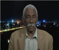 محلل: هناك انقسام حاد داخل المجتمعات في دارفور سببه نظام الإخوان