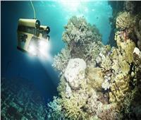 باحثون أمريكيون يطورون روبوتات ذاتية الحركة للقيام بمهمات في المحيطات