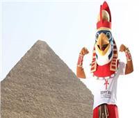 المنتخبات المشاركة بـ«مونديال اليد» تشيد بالتنظيم المصري الرائع للبطولة