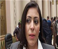 نائبة برلمانية: منصب وزير الإعلام أصبح مجرد لقب مضاف على كارت شخصي