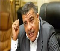 رئيس صناعة البرلمان: ندرس قرار تصفية «الحديد والصلب» لتأييده أو رفضه