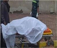 مصرعمسن صدمته سيارة أثناء عبوره الطريق الزراعي بكفر الدوار