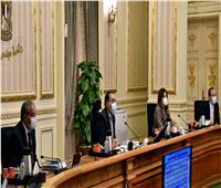 أهم القرارات الحكومية بالجريدة الرسمية في عددها الـ17