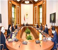 الرئيس السيسي يوجه بالتوسع في استخدام الطاقة النظيفة بالمحافظات