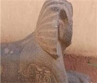 الإسماعيلية في 24 ساعة | إحباط محاولة بيع تمثال أثري ضخم.. الأبرز