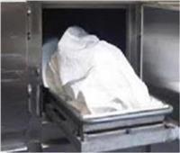 عامل يلقى مصرعه دهساَ بمنطقة العجمي غرب الإسكندرية