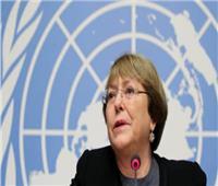 فلسطين تراسل مفوضة الأمم المتحدة حول الشركات العاملة بالمستوطنات