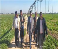 «الزراعة»: جولة ميدانية لمتابعة المحاصيل الشتوية بالإسكندرية والبحيرة