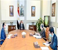 الرئيس يوجه بتطوير البنية الأساسية الكهربائية في قرى الريف وتوابعها