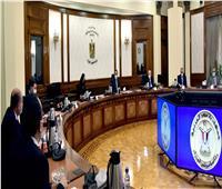 رئيس الوزراء يتابع موقف مشروعات المنطقة الصناعية ببورسعيد