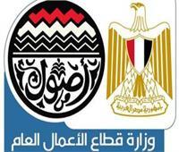 «قطاع الأعمال»: 13 مليار جنيه لتطوير «مصر للألومنيوم»